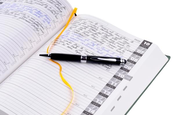 open-pen-partial-600-x-399.jpg